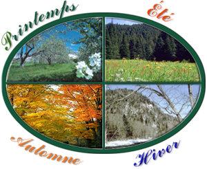 Les quatres saisons - Printemps ete automne hiver et printemps ...